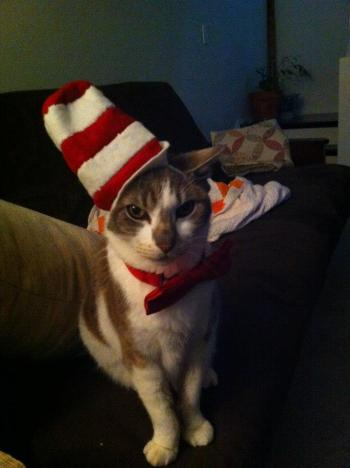peeps as the cat in the hat
