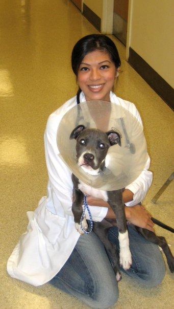 Dr. Winnie Ybarra
