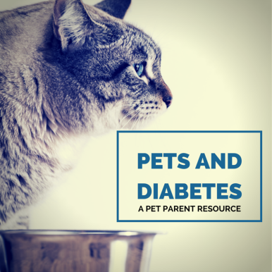PETS AND DIABETES